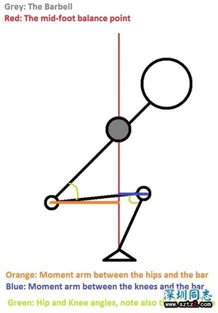 健身知识:深蹲动作的杠杆系统